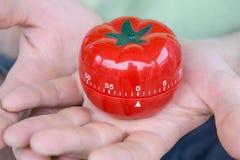 Den röda uppsättningen för tomatköktidmätaren till 0, rymt av båda händer, med öppet gömma i handflatan fotografering för bildbyråer