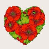 Den röda vallmo blommar hjärtaillustrationen Arkivfoton