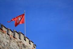 Den röda vapenskölden av Tjeckien Flaggan med lejonet på fästningen på den blåa himlen arkivfoton