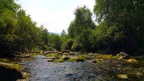 Den rasa Siberian floden lager videofilmer
