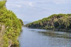 Den regionala kanalen av San Rossore parkerar, Italien Royaltyfria Foton