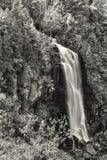 Den reko snedsteget faller svartvitt Arkivbild
