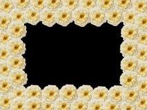 Den rektangulära ramen av gula rosor Arkivbild