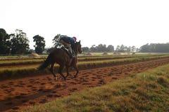 An den Rennen stockfoto
