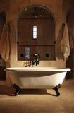 den retro badrumjordluckrarefoten badar Royaltyfri Bild