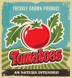 Den Retro etiketten för affischen för tomattappningadvertizingen - belägga med metall tecknet och märk designen Royaltyfria Bilder
