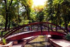 Den Retro träbron i naturligt parkerar och tillgriper på den lilla floden royaltyfri bild