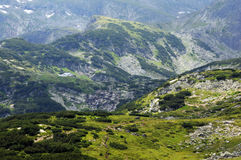 In den Rila-Bergen Stockbild