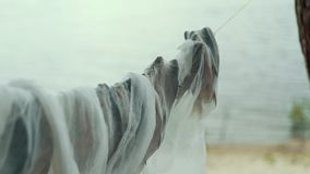 Den rimmade fisken torkade under cheesecloth i det fria i fiskeläge arkivfilmer