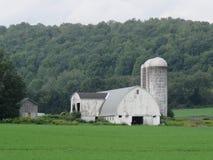 Den robusa gamla ladugården och silor kunde använda en framsidaelevator royaltyfri fotografi