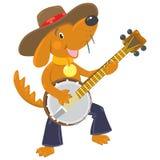 Den roliga bruna hunden spelar banjon Arkivbilder
