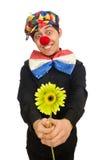 Den roliga clownen med blommor som isoleras på vit Royaltyfri Foto