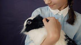 Den roliga easter kaninen spelar med flickan lager videofilmer