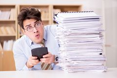 Den roliga revisorbokhållaren som arbetar i kontoret Arkivfoto