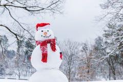den roliga snögubben i halsduk, tumvanten och den santa hatten i vinter parkerar Royaltyfri Fotografi