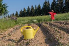 den roliga välgörenhetsamlingen går kungariket ståtar tävlings- scarecrowscarecrows för bilden som tas förenad winkfield Arkivfoton