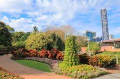 Den Roma gatan parkerar trädgårds- Brisbane Australien Arkivbilder