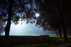 Den romantiska och mystiska staden parkerar dolt med dimma san för natt för fjärdbroca francisco tid Royaltyfria Bilder