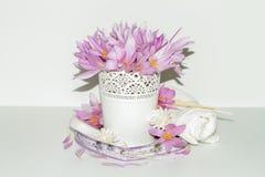 Den romantiska ordningen, sammansättning på mjuka pastellfärgade färger med rosa krokus blommar Arkivfoton
