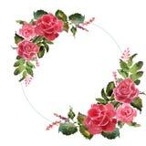 Den romantiska vattenfärgen steg blommakransramen stock illustrationer