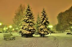Den romantiska vinteraftonen i en stad parkerar Royaltyfri Fotografi