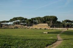 Den romerska akvedukten i San Policarpo parkerar, Rome royaltyfri bild