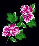Den rosa blomman ställde in 2 Vektor Illustrationer
