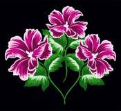 Den rosa blomman ställde in 4 Stock Illustrationer