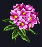 Den rosa blomman ställde in 5 Stock Illustrationer