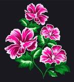 Den rosa blomman ställde in 7 Stock Illustrationer