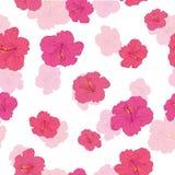 Den rosa hibiskusen blommar den sömlösa repetitionmodellen Arkivbilder