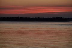 Den rosa orange solnedgången reflekterade på den lugna sjön till och med trädkontur Fotografering för Bildbyråer