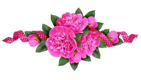 Den rosa pionen blommar buketten och ett siden- prickigt band Arkivfoton