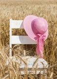 Den rosa sneda bollen rågade hatten med pilbågen som hänger på stol Royaltyfria Bilder