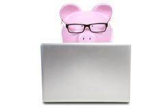 Den rosa svin- och anteckningsbokdatoren Arkivbild