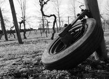 Den rostade gamla traktoren rullar in en jordbruksmark Royaltyfri Foto