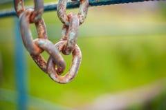 Den rostiga kedjan hänger på ett blått staket i eftermiddagen royaltyfri foto
