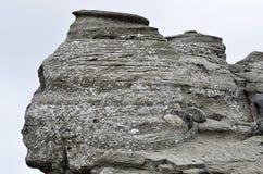 Den rumänska sfinxen, det geologiska fenomenet bildade till och med erosion Royaltyfri Foto