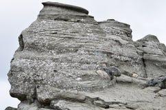Den rumänska sfinxen, det geologiska fenomenet bildade till och med erosion, Bucegi berg royaltyfria bilder