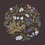 Den rund botanisk dekorativ designbeståndsdelen, bakgrunden eller garnering bestod av det färgrika skogbarrträdet stock illustrationer