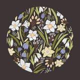 Den runda blom- bakgrunden eller den runda dekorativa designbeståndsdelen bestod av ursnygga trädgårds- blomma blommor och att bl Fotografering för Bildbyråer