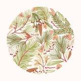 Den runda designbeståndsdelen, garnering eller bakgrunden som komponeras av eleganta filialer av barrträdet, gran eller, sörjer v vektor illustrationer