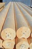 Den runda kalibrerade byggande stången från en tree Arkivfoto