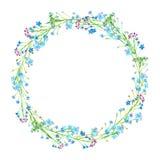 Den runda ramen av en förgätmigej blommar Royaltyfria Bilder