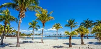 Den runda stranden på Matheson Hammock County Park Miami royaltyfria bilder