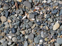 Den rundade stranden vaggar Arkivfoton