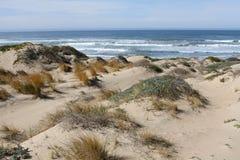 den russia för kurshskayaen för dynhorisontkosaen sanden går sträcka till Arkivfoton