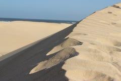 den russia för kurshskayaen för dynhorisontkosaen sanden går sträcka till Fotografering för Bildbyråer