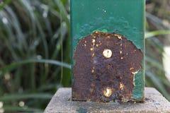 Den Rustly polen har färgblåsan och skalning Arkivfoto