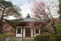 Den Ryoanji templet arbeta i trädgården i Kyoto, Japan Arkivbild